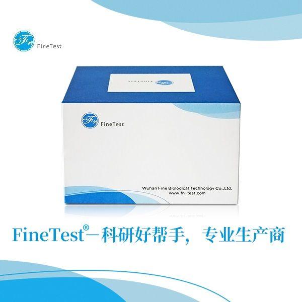 Human NGAL ELISA kit|人NGAL ELISA试剂盒