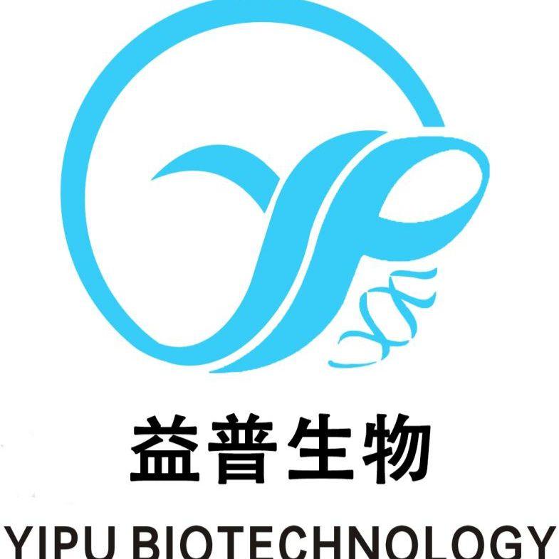 MR1 / MR1细胞 / MR1中国仓鼠X小鼠B淋巴细胞杂交瘤