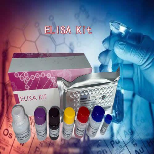 人激素敏感性脂肪酶ELISA检测试剂盒