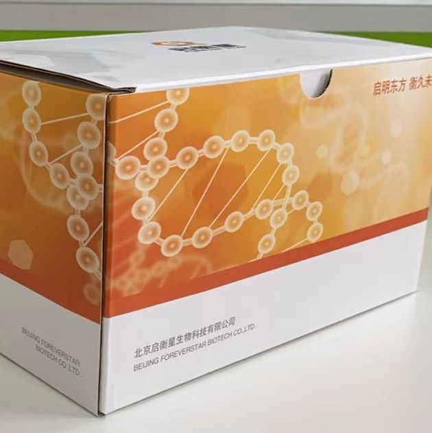 StarPure FFPE 核酸提取试剂盒