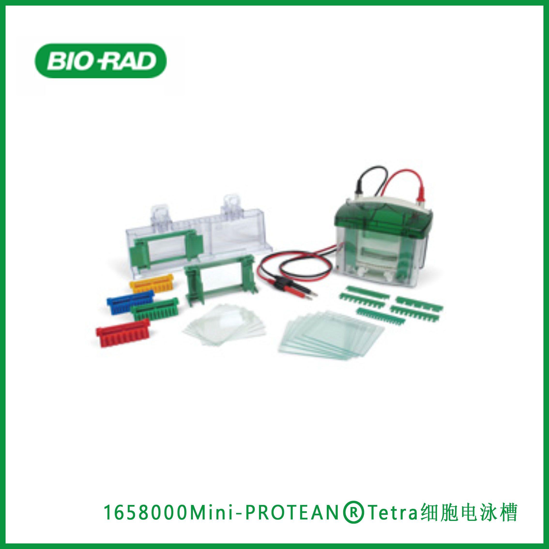 伯乐Bio-Rad1658000Mini-PROTEAN® Tetra Cell, Mini-PROTEAN®Tetra细胞电泳槽,现货
