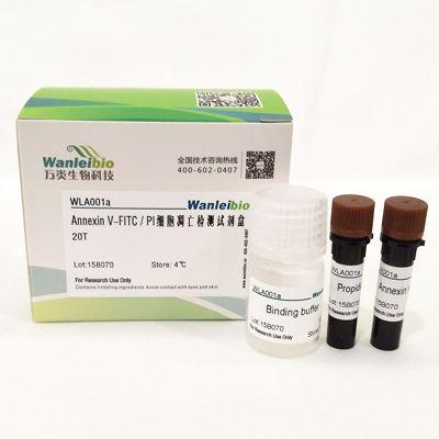 Annexin V-FITC/PI细胞凋亡检测试剂盒-20T