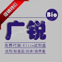 小鼠GLP-1elisa试剂盒