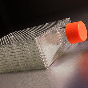 超级细胞培养瓶