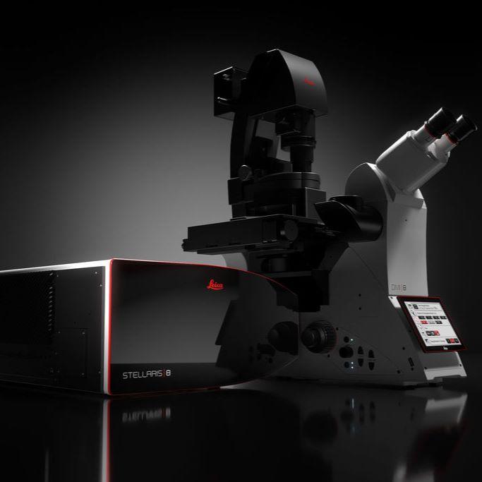 德国徕卡 共聚焦显微镜 STELLARIS 8