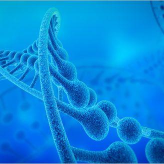 基因合成(免费设计方案/酶切位点的设计、密码子的优化/签订服务协议和保密合同/将合成的基因克隆到指定的载体上)/擎科生物TSINGKE