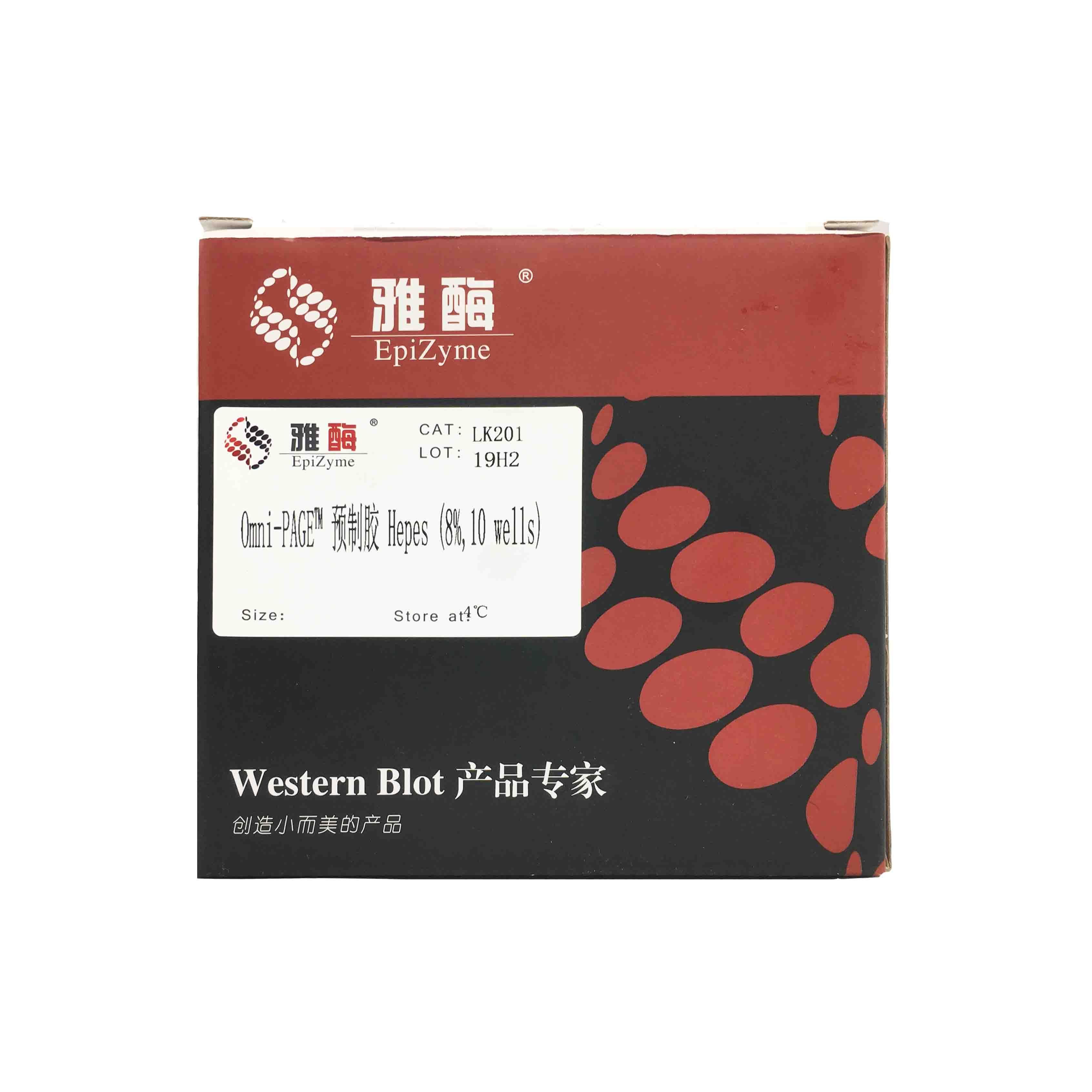 LK201 Omni-PAGE™ 预制胶 Hepes 8%,10 wells