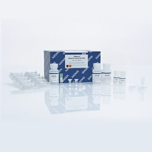 Qiagen 28004 PCR产物纯化试剂盒