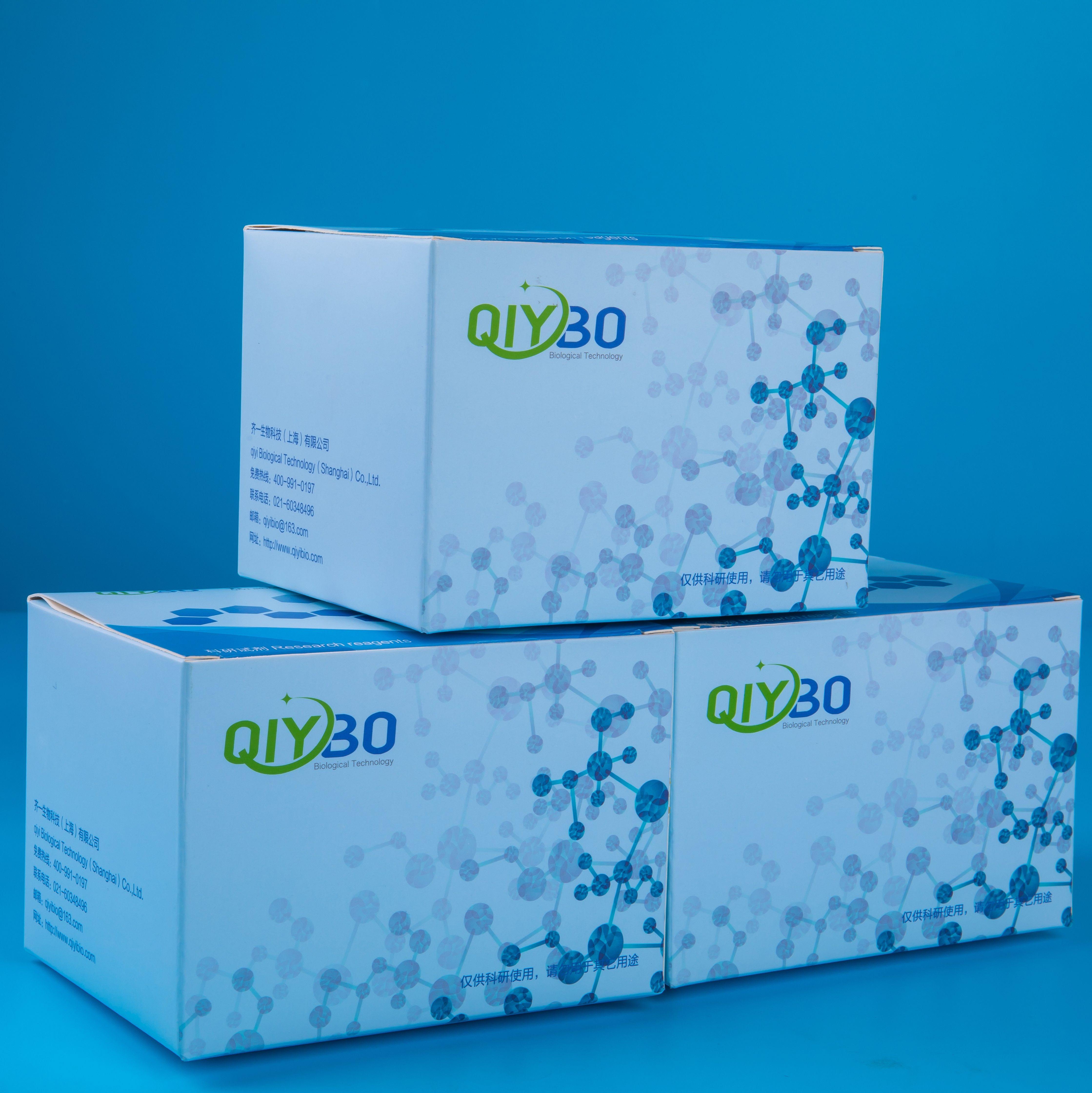 H2S含量测定试剂盒