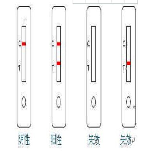 尿液分析试纸条(干式化学法)