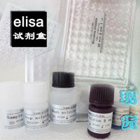 小鼠血管内皮细胞生长因子B(VEGF-B)48孔elisa分类 ,