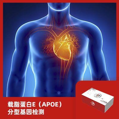 载脂蛋白E(APOE)分型基因检测