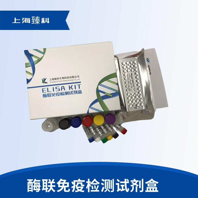 犬雌激素(E)elisa试剂盒