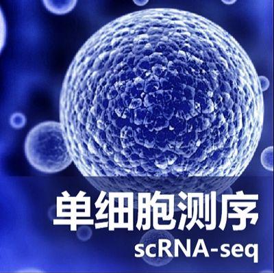 单细胞测序服务(Single Cell RNA Sequencing)