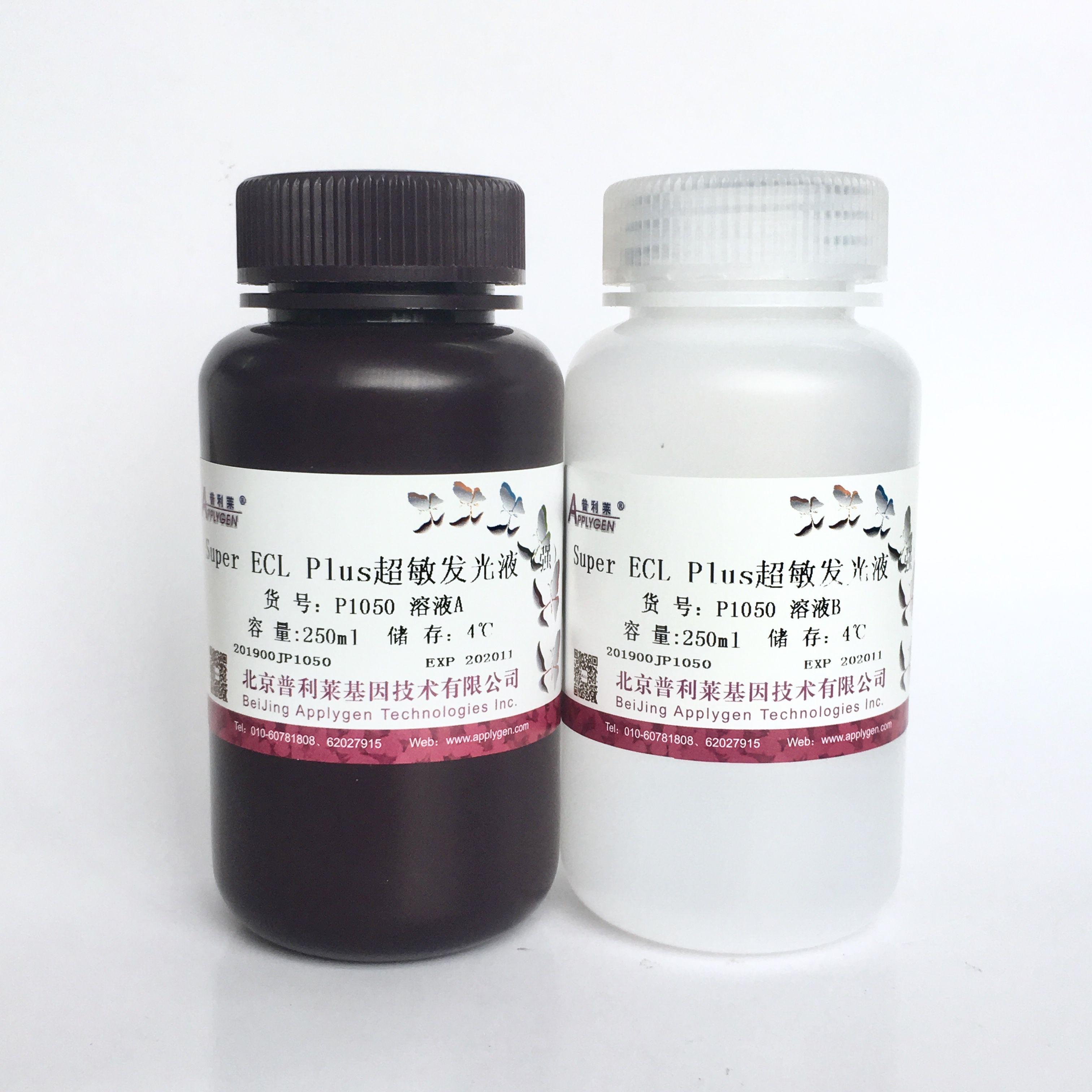 Super ECL Plus超敏发光液(强) P1050