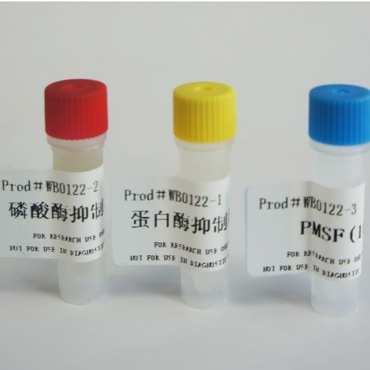 蛋白酶、磷酸酶、PMSF三联装