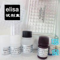 CCAAT增强子结合蛋白β实验步骤(C/EBPβ)elisa技术