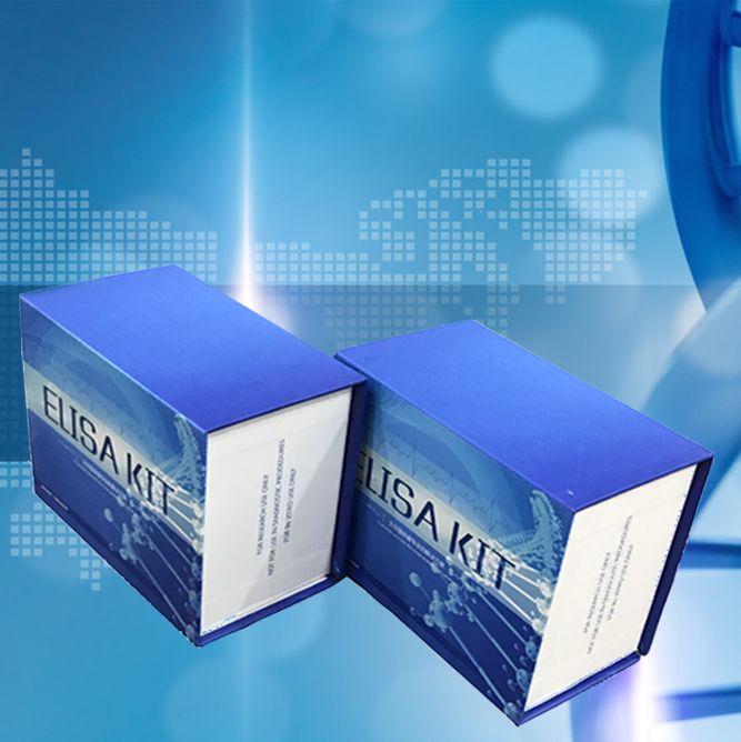 人立克次体抗体IgM(COX)ELISA试剂盒