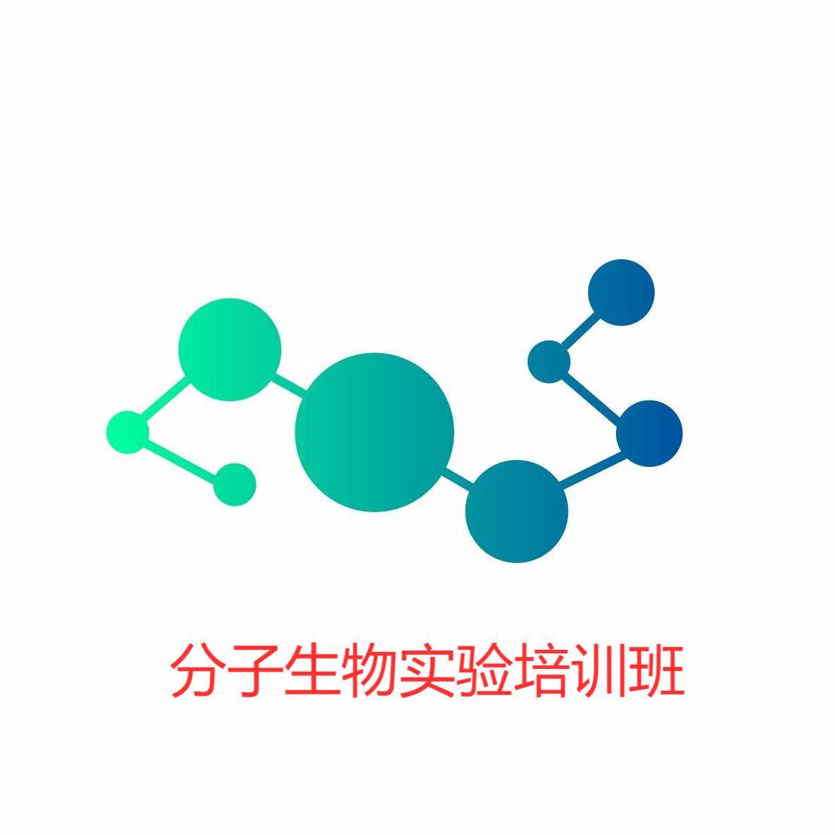 分子生物学实验培训课