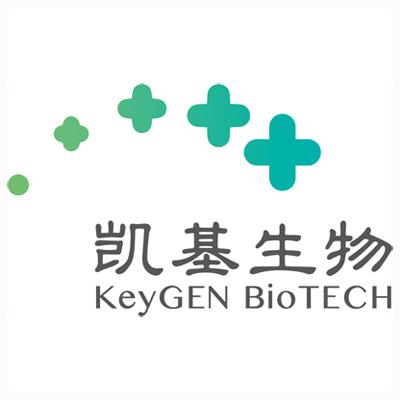 一氧化.氮检测试剂盒(硝酸还原酶法)