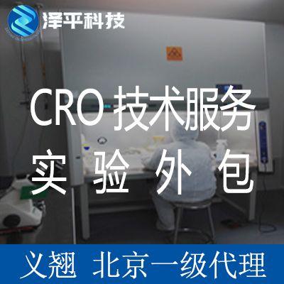 免疫印迹Western Blot检测实验外包技术服务CRO