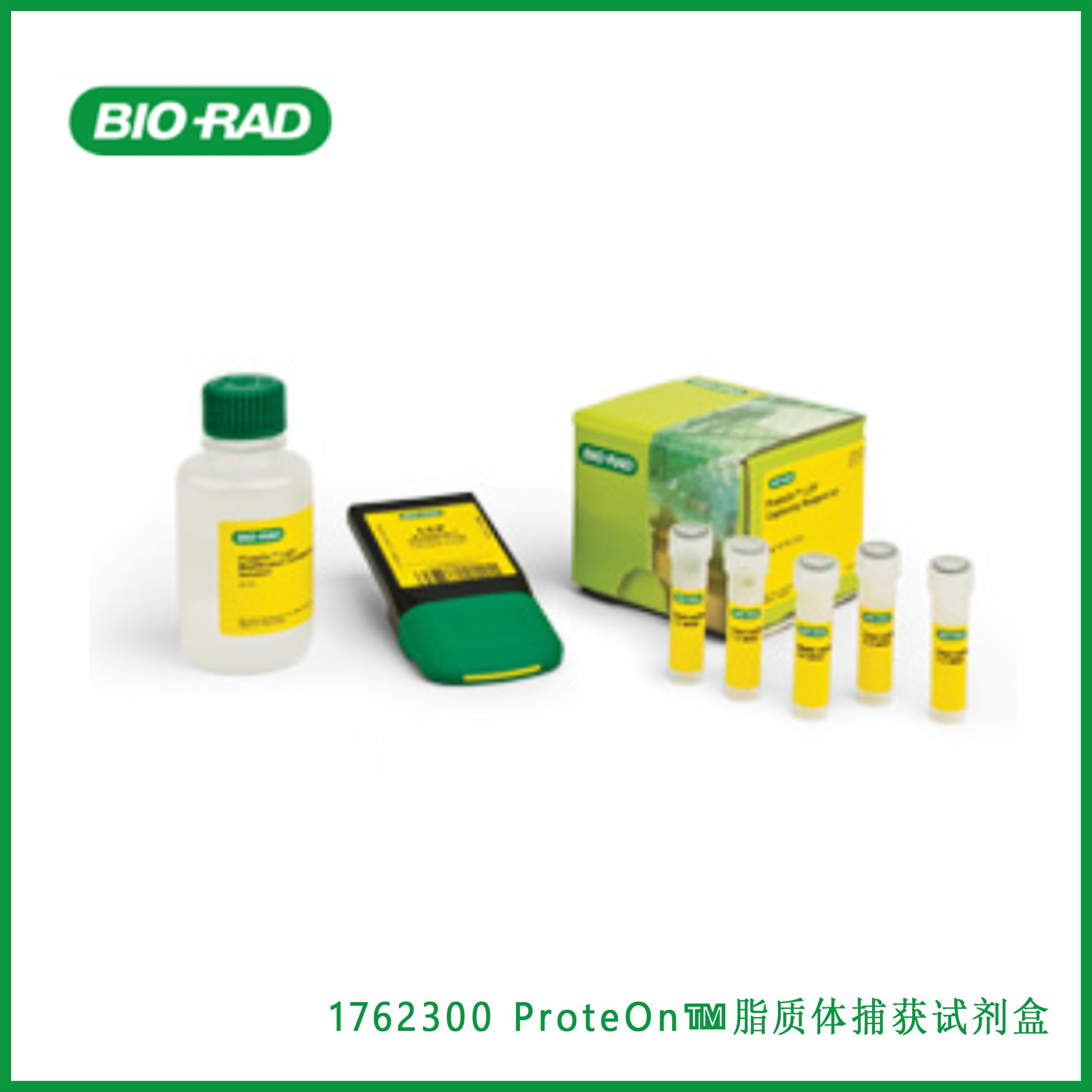 伯乐Bio-Rad1762300ProteOn™ Liposome Capturing Kit,ProteOn™脂质体捕获试剂盒,现货