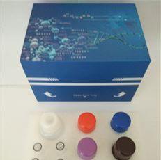 BCA蛋白法含量测试盒微量法