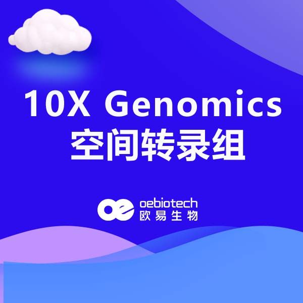 10X Genomics 空间转录组测序