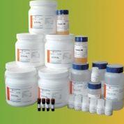 总RNA提取试剂盒50T/100T厂家直销