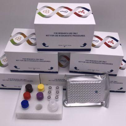猪肺表面活性物质相关蛋白A(SP-A)ELISA试剂盒