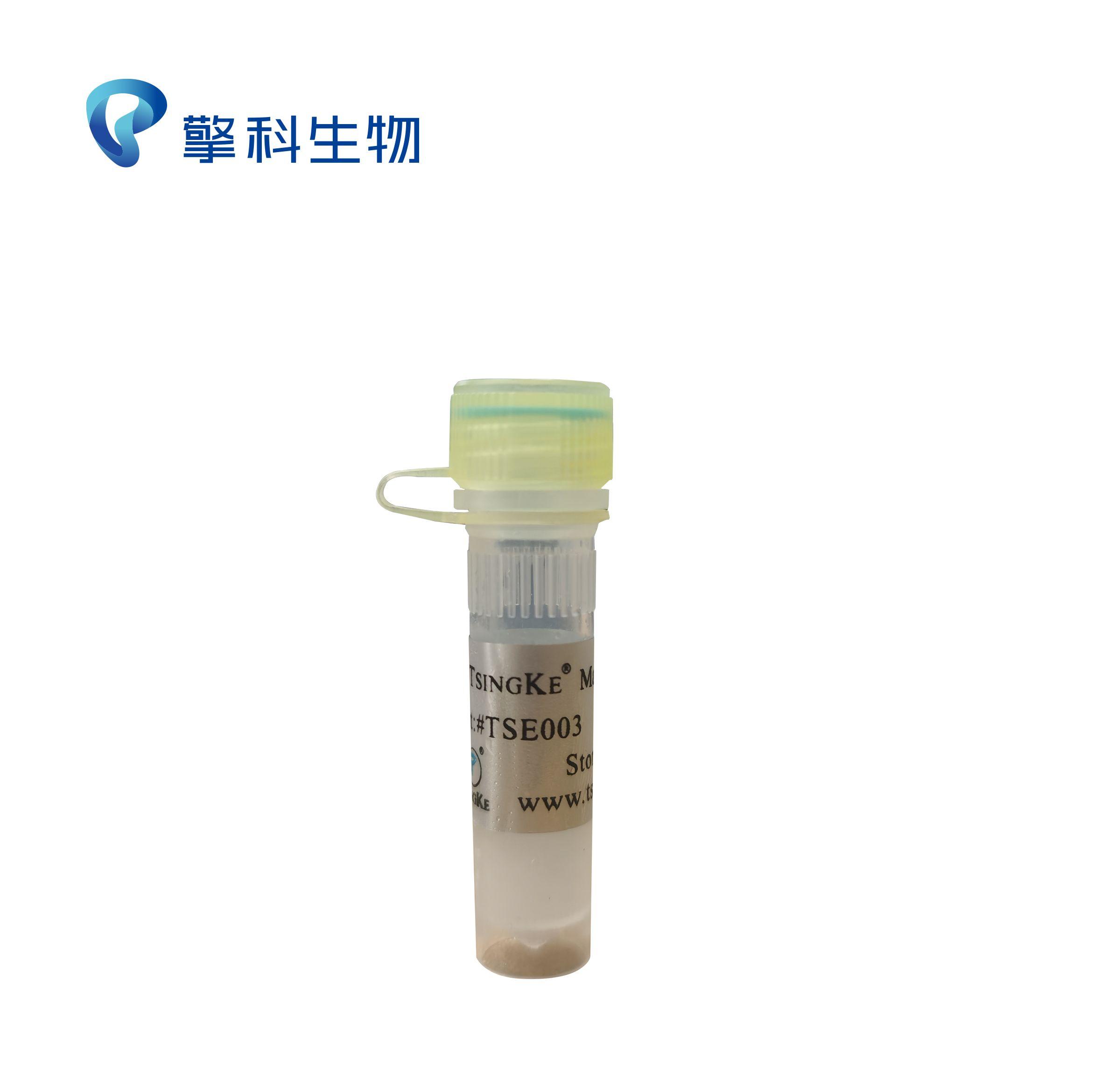 2×TSINGKE Master Mix/热启动酶、高灵敏度、高产量、适用于多重PCR、无色mix/擎科生物TSINGKE