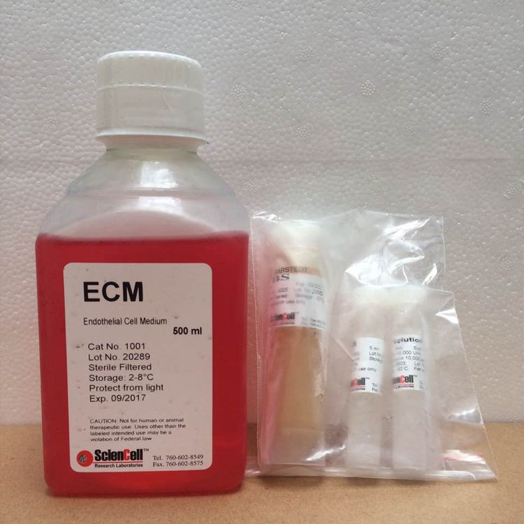 sciencell 1001 内皮细胞培养基ECM