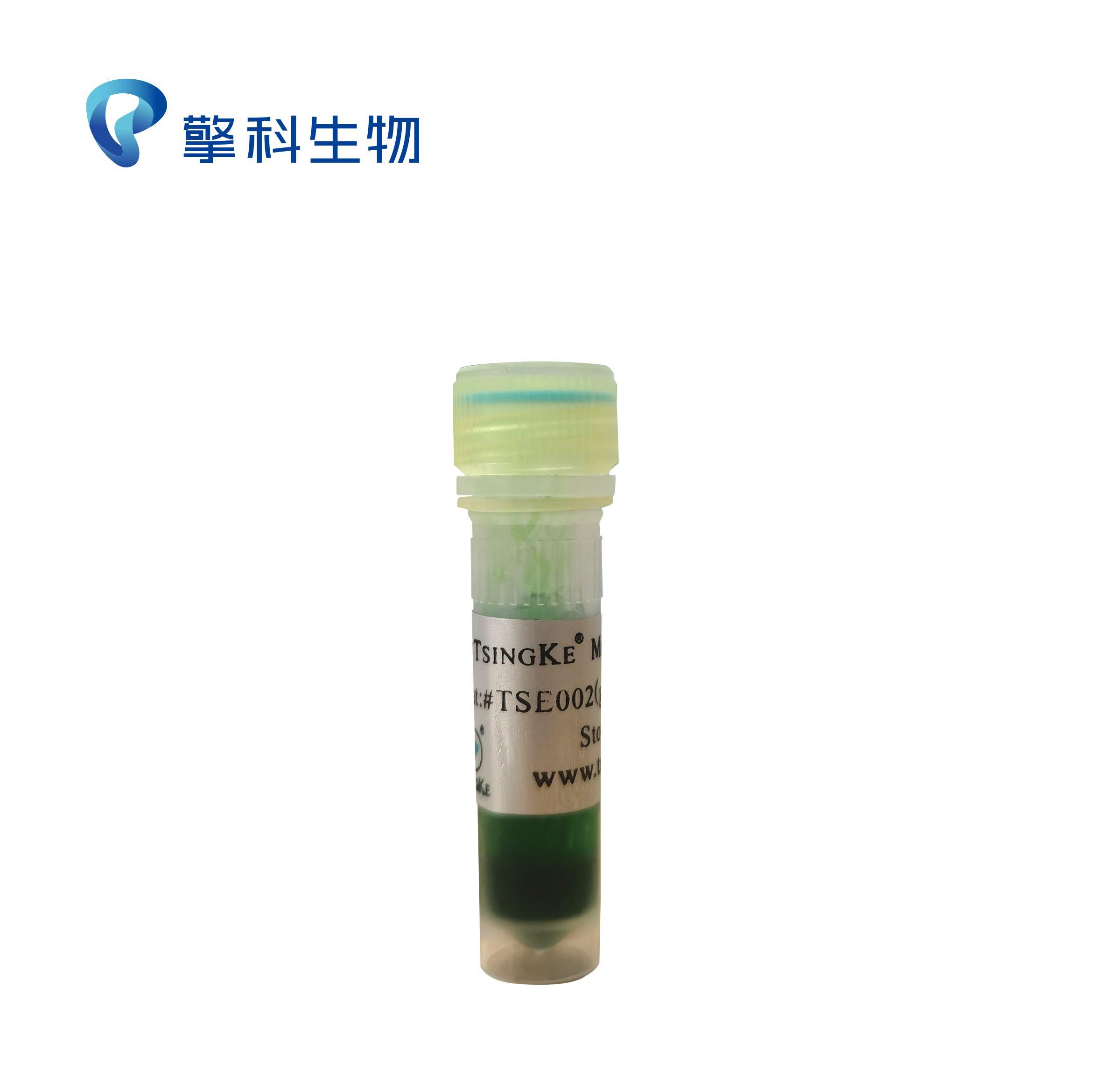 2×TSINGKE Master Mix(Green)/PAGE专用PCRmix,简便稳定/PCR系列/PAGE专用PCRmix,简便稳定/擎科生物TSINGKE