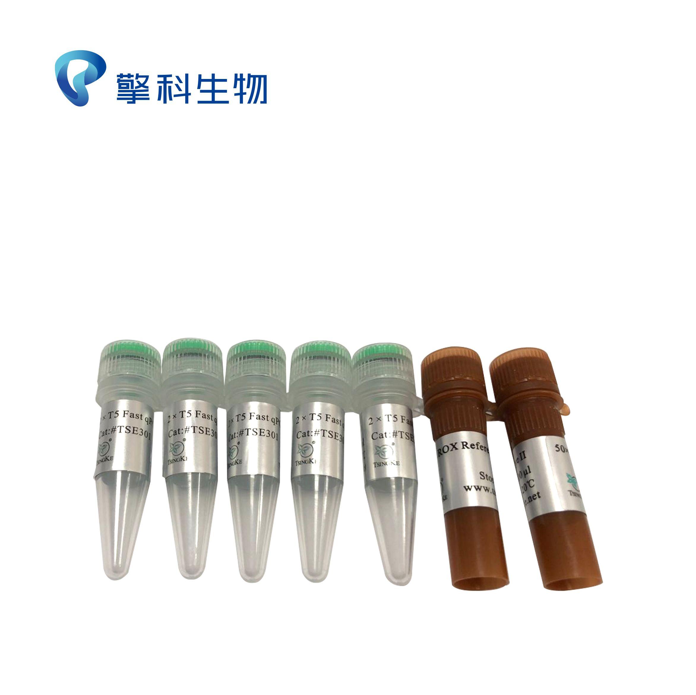 2×T5 Fast qPCR Mix(Probe)/快速耐脏型探针法专用试剂/荧光定量系列/擎科生物TSINGKE
