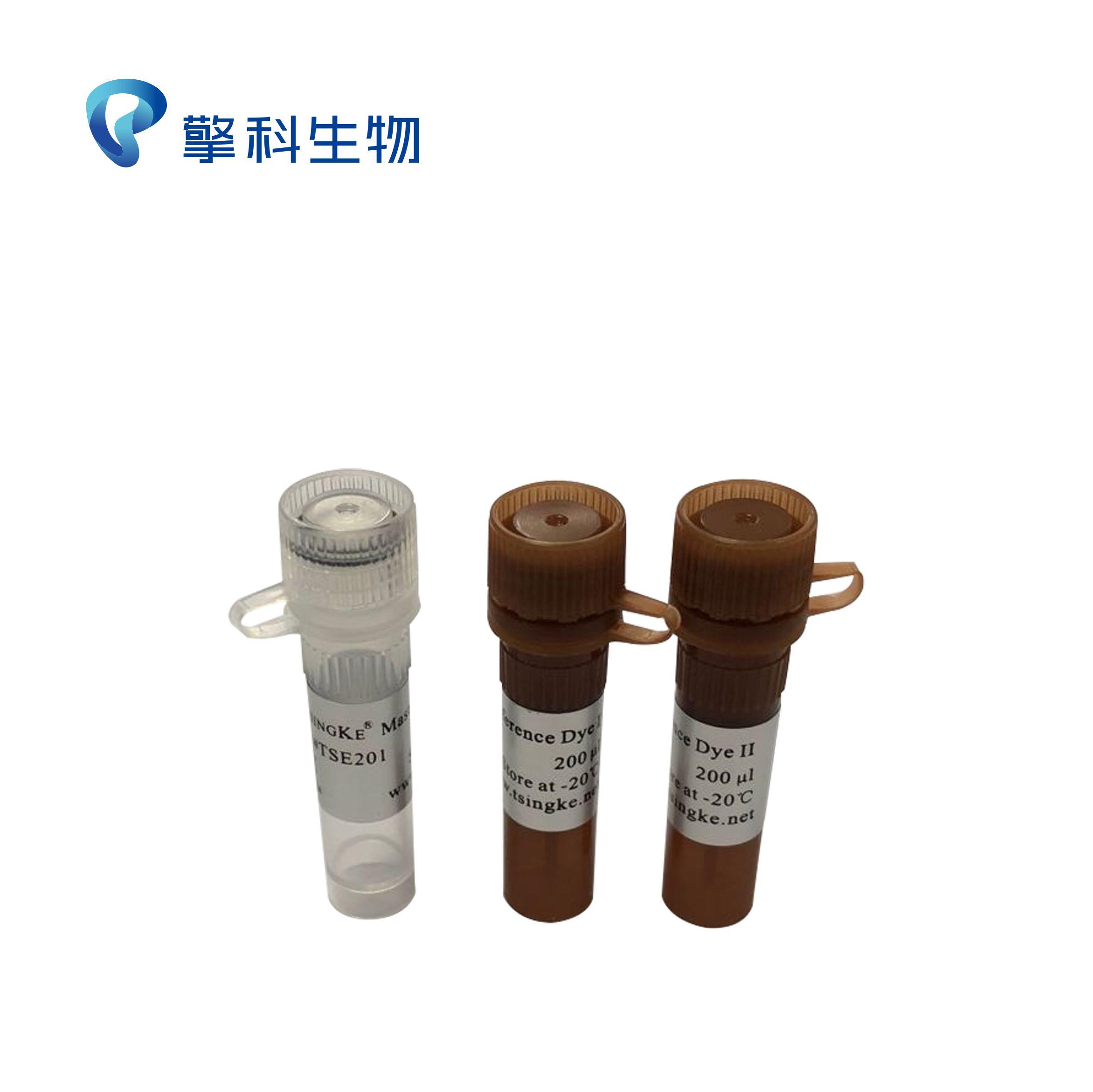 2×TSINGKE® Master qPCR Mix(SYBR Green I)/荧光定量系列/擎科生物TSINGKE