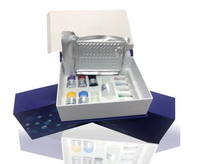 大鼠雄激素ELISA试剂盒