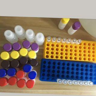 人前列腺素E2(PGE2)ELISA试剂盒