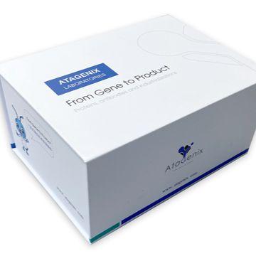 SARS-CoV-2(2019-nCoV) Surrogate Virus Neutralization检测试剂盒