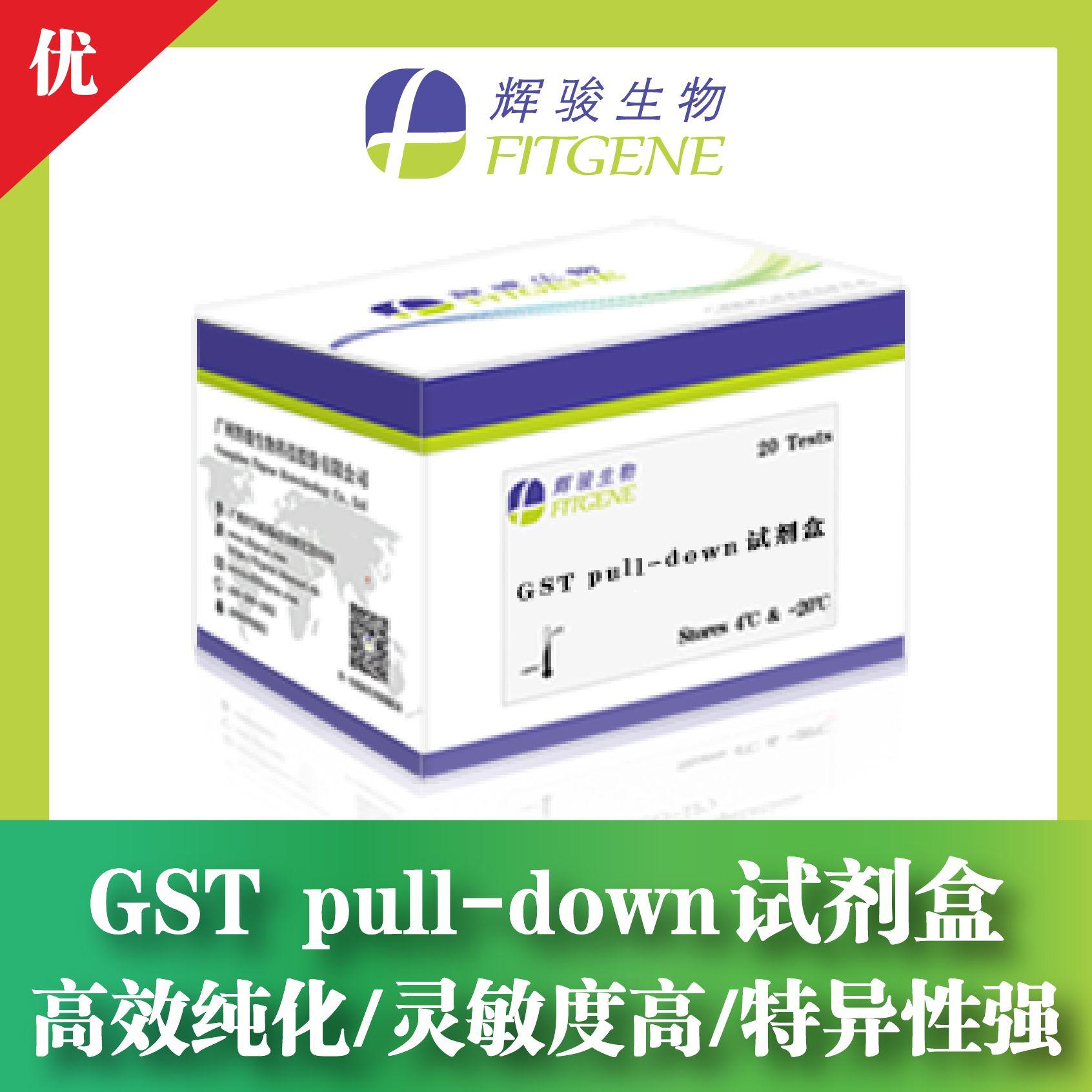 GST pull-down试剂盒-高效纯化/灵敏度高/特异性强-辉骏生物