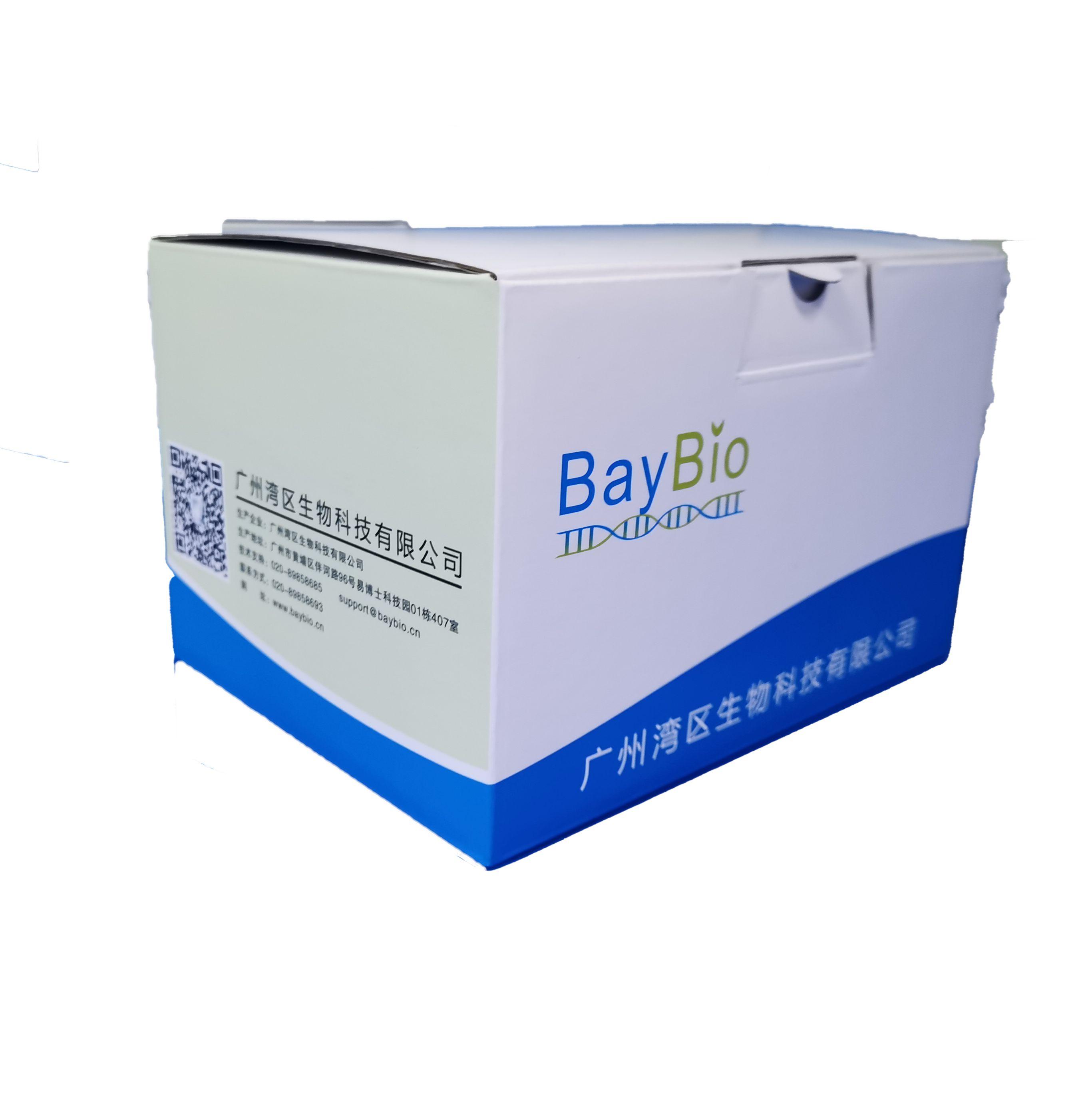 Baypure通用型磁珠法基因组DNA提取试剂盒