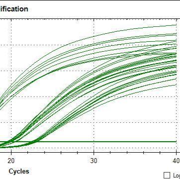 mRNA定量PCR检测|miRNA定量PCR检测|DNA拷贝数检测|绝对相对定量PCR服务