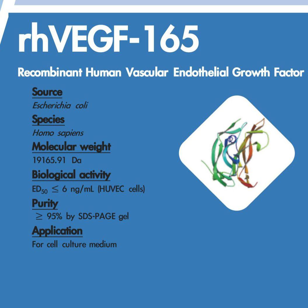rhVEGF-165