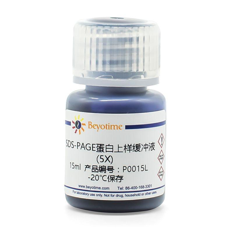 SDS-PAGE蛋白上样缓冲液(5X)