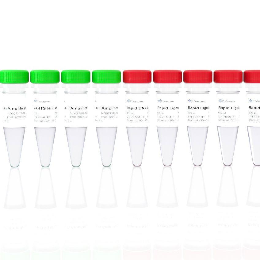 酶切片段化法DNA建库试剂盒(VAHTS Universal Plus DNA Library Prep Kit for Illumina V2)(ND627)