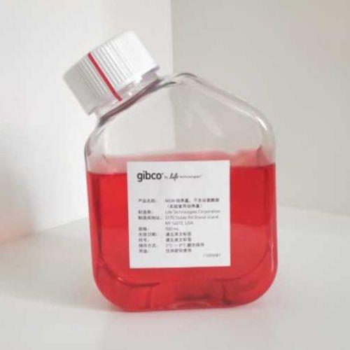 Gibco货号:11090081 MEM培养基,不含谷氨酰胺(实验室用培养基)