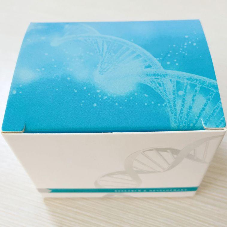 链壶菌核酸检测试剂盒(PCR-荧光探针法)