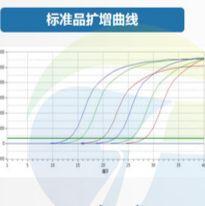 实时荧光定量PCR服务_实时荧光定量pcr检测服务_实验外包