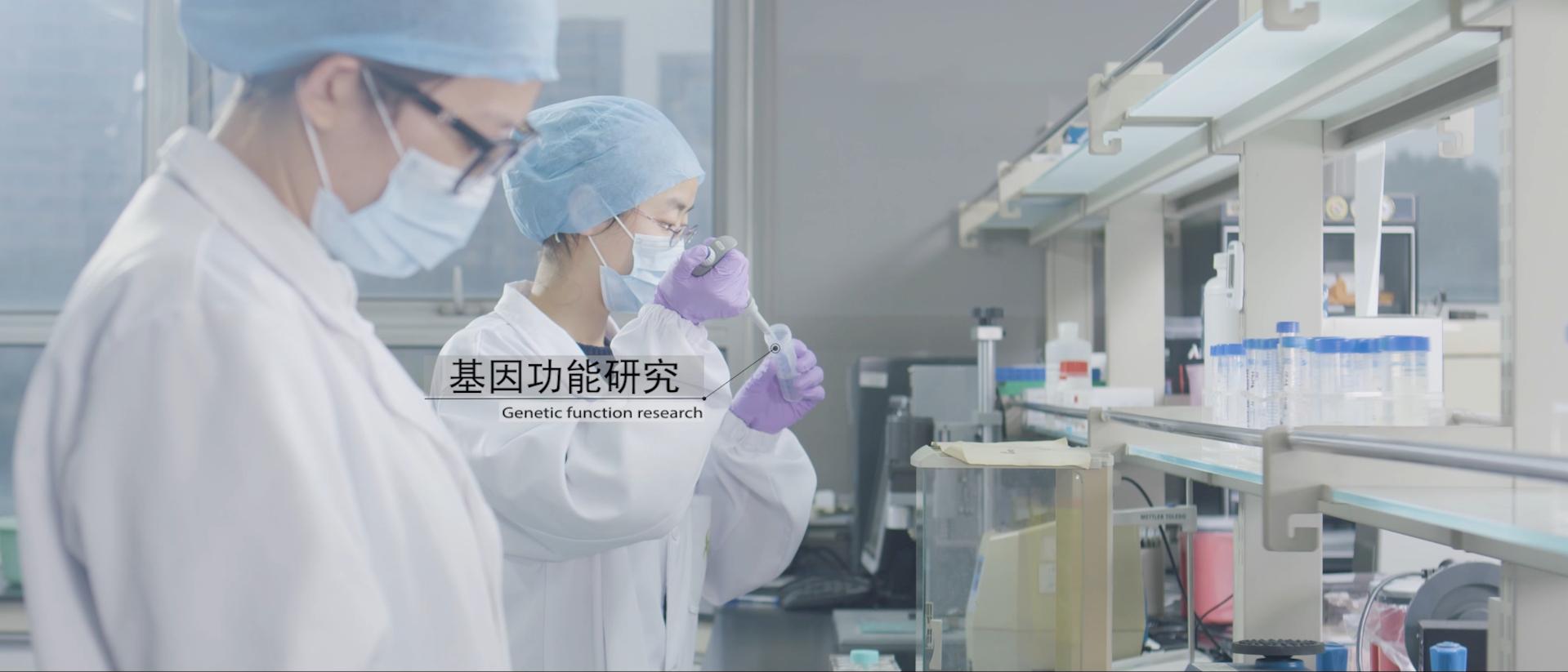 伯豪生物基因工程验证服务