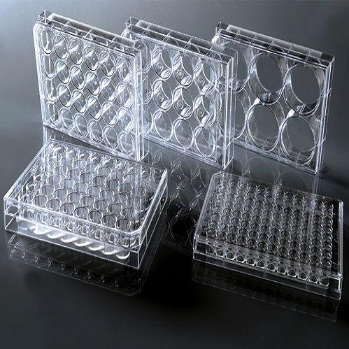 细胞培养小室耐思(聚碳酸酯)膜 带盖TC
