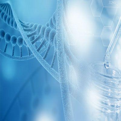 氨基酸序列测定